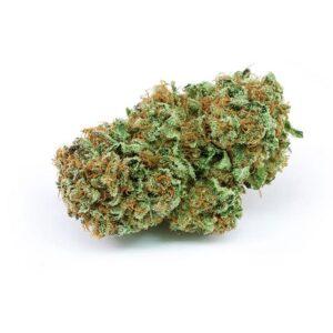 Harlequin-weed-strain